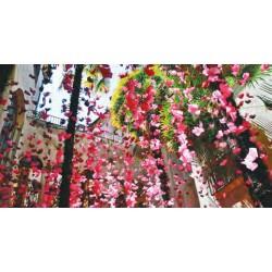 Gérone, La fête des fleurs