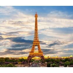 Paris Découverte